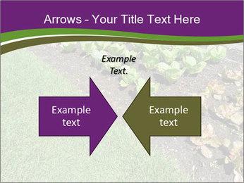 Garden PowerPoint Template - Slide 90