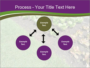 Garden PowerPoint Template - Slide 91