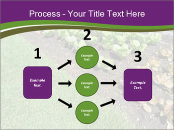 Garden PowerPoint Template - Slide 92