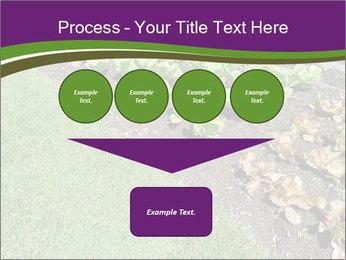 Garden PowerPoint Template - Slide 93