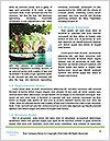 0000092140 Word Template - Page 4