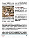 0000092148 Word Template - Page 4