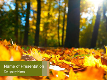 Macro PowerPoint Template