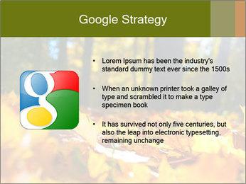 Macro PowerPoint Templates - Slide 10