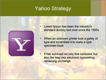 Macro PowerPoint Templates - Slide 11