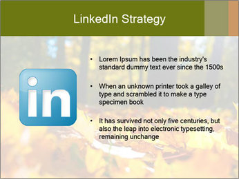 Macro PowerPoint Templates - Slide 12
