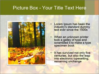 Macro PowerPoint Templates - Slide 13