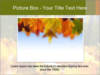 Macro PowerPoint Templates - Slide 15