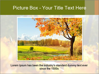 Macro PowerPoint Templates - Slide 16