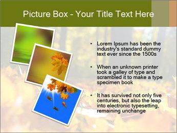 Macro PowerPoint Templates - Slide 17