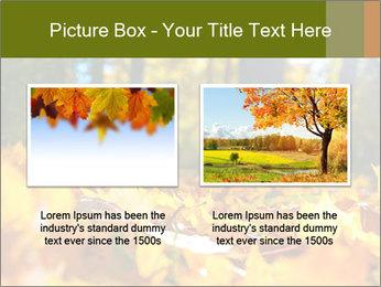 Macro PowerPoint Templates - Slide 18