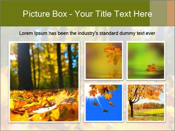 Macro PowerPoint Templates - Slide 19