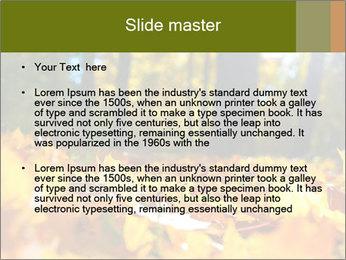 Macro PowerPoint Templates - Slide 2