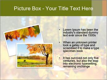 Macro PowerPoint Templates - Slide 20