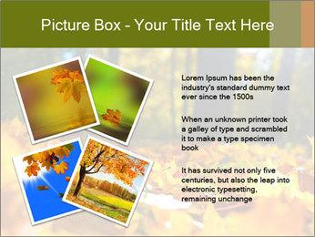 Macro PowerPoint Templates - Slide 23