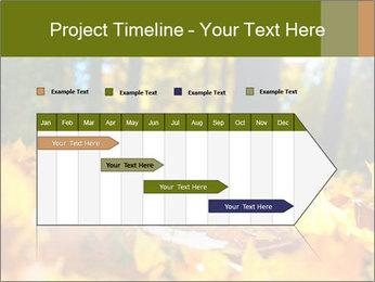 Macro PowerPoint Templates - Slide 25