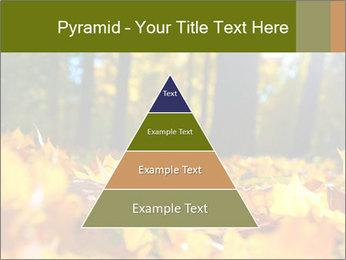 Macro PowerPoint Templates - Slide 30