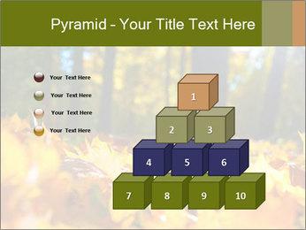 Macro PowerPoint Templates - Slide 31