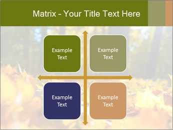 Macro PowerPoint Templates - Slide 37