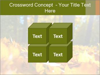 Macro PowerPoint Templates - Slide 39