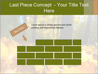 Macro PowerPoint Templates - Slide 46
