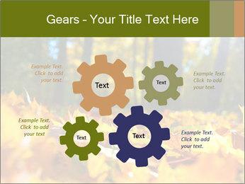 Macro PowerPoint Templates - Slide 47