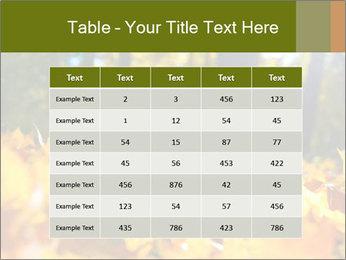 Macro PowerPoint Templates - Slide 55
