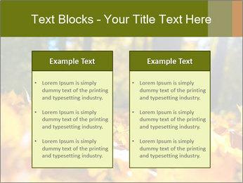 Macro PowerPoint Templates - Slide 57