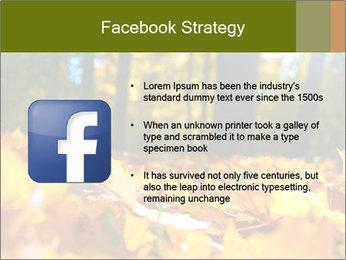 Macro PowerPoint Templates - Slide 6