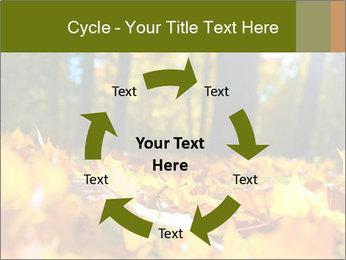 Macro PowerPoint Templates - Slide 62