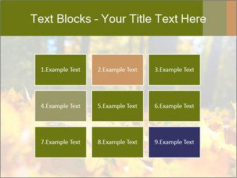 Macro PowerPoint Templates - Slide 68