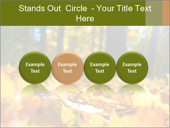 Macro PowerPoint Templates - Slide 76