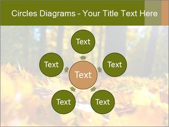 Macro PowerPoint Templates - Slide 78