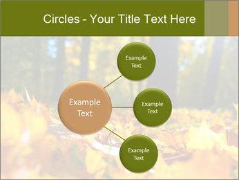 Macro PowerPoint Templates - Slide 79