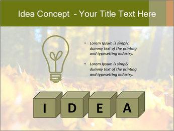 Macro PowerPoint Templates - Slide 80