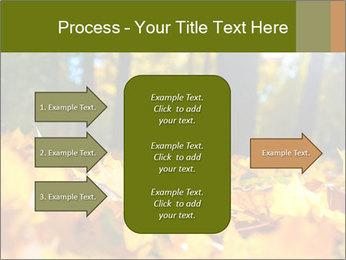 Macro PowerPoint Templates - Slide 85