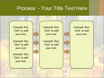 Macro PowerPoint Templates - Slide 86