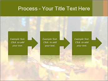 Macro PowerPoint Templates - Slide 88