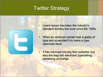 Macro PowerPoint Templates - Slide 9