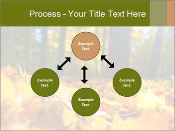 Macro PowerPoint Templates - Slide 91