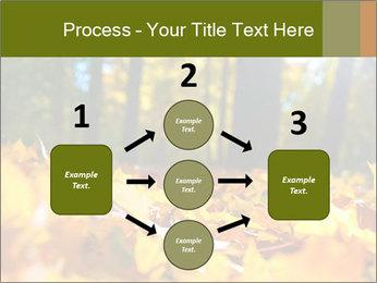 Macro PowerPoint Templates - Slide 92