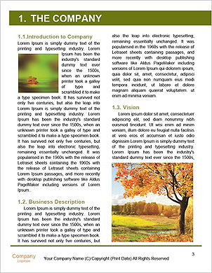 0000092152 Word Template - Page 3
