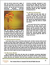 0000092152 Word Template - Page 4