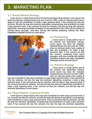 0000092152 Word Template - Page 8
