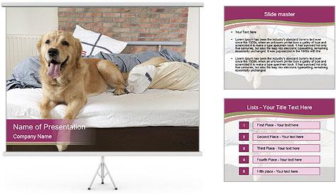 Golden retriever PowerPoint Template