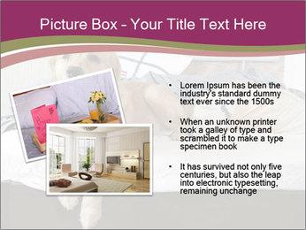Golden retriever PowerPoint Template - Slide 20