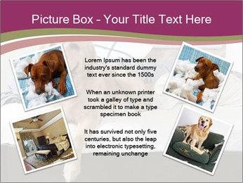 Golden retriever PowerPoint Template - Slide 24