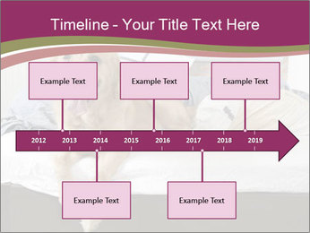 Golden retriever PowerPoint Template - Slide 28