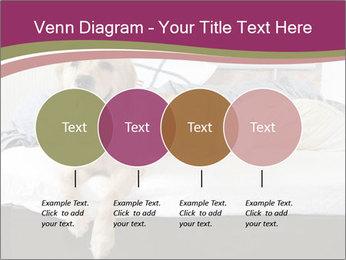 Golden retriever PowerPoint Template - Slide 32