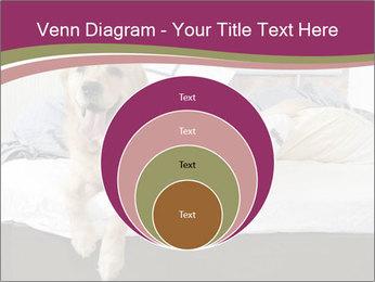 Golden retriever PowerPoint Template - Slide 34